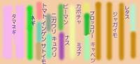 Hatake0805