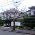 初期に開発された桜ヶ丘地区のまちなみ