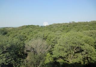 02 研究室からの景観(モリコロパーク観覧車)
