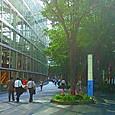 03 東京国際フォーラム中庭