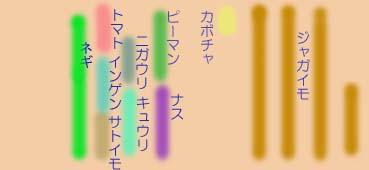 Hatake0806