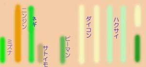 Hatake0810