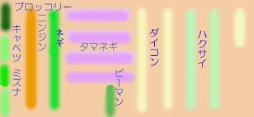 Hatake0811